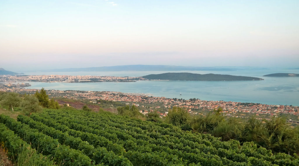 view from Bedalov vineyard on Kozjak onto Kastela Bay