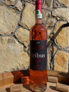 Rose Tribus